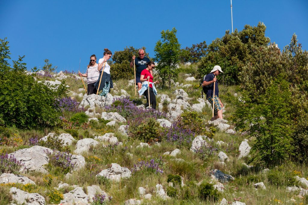 "Myrtle shrubs, thyme, rosemary, lavender and mastic trees, or almost alpine with meadows and bare rocks, this is the scenery you will discover during this ""Green hiking tour""."