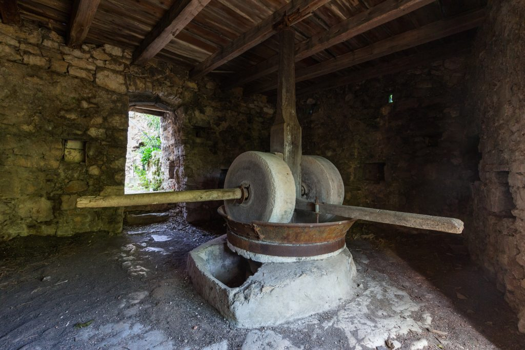 With the traditional method, olives are crushed as old times, this means, with stone mills.Olives are introduced in the stone mills to be crushed, after this they are introduced in a press to take out olive oil.