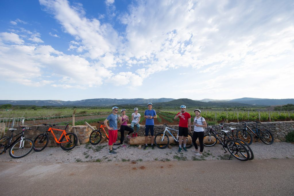 Cycling on peaceful country lanes, through an endless panorama of vineyards, olive groves and centuries-old stone dry-walls.